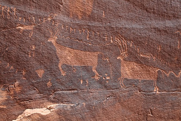 Procession Panel, Comb Ridge, Near Bluff, Utah