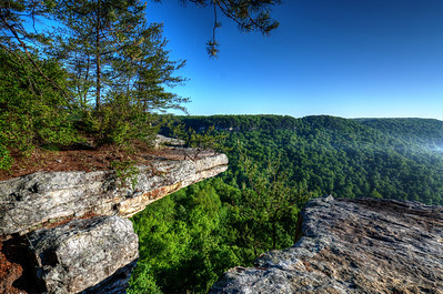 Savage Gulf Overlook, Tennessee