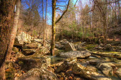Collins River in February, Savage Gulf State Natural Area, Tennessee