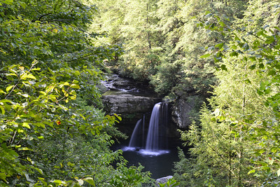 Savage Falls located in the Savage Gulf State Natural Area, Tennessee