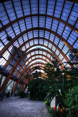 Sheffield-Winter-Gardens-Millennium-Gallery-Vitral-Rooflights-Internal-Towards-St-Pauls-Tower-and-the-Peace-Gardens-HDR-2