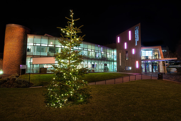 University-of-Sheffield-Students-Union-Christmas-Tree-Winter-at-Night-HDR
