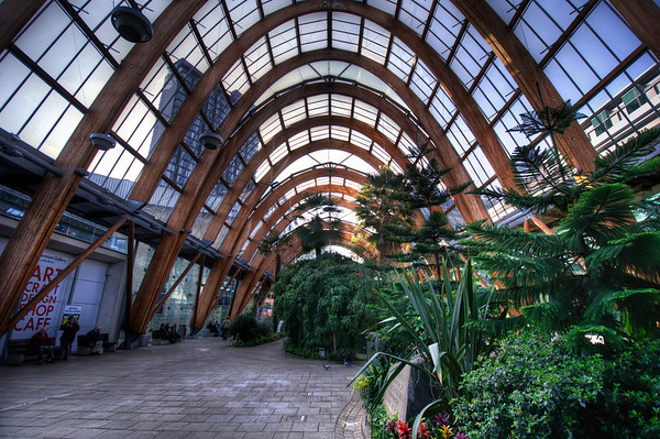 Sheffield-Winter-Gardens-Millennium-Gallery-Vitral-Rooflights-Internal-Towards-St-Pauls-Tower-and-the-Peace-Gardens-HDR-3