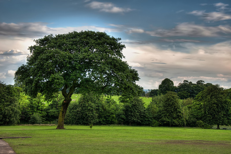 Graves-Park-Sheffield-HDR