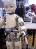 The iCub robot
