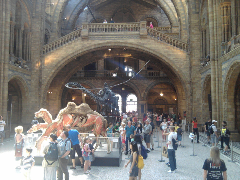 The Natural History museum in London.
