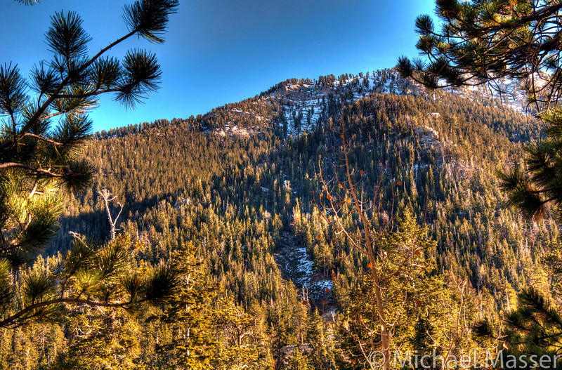 Mount-Charleston-Nevada-HDR-11