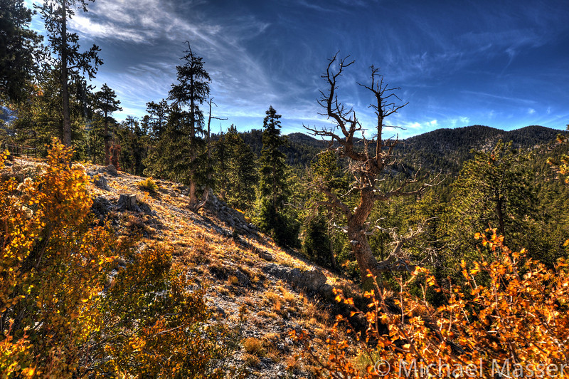 Mount-Charleston-Nevada-HDR-2