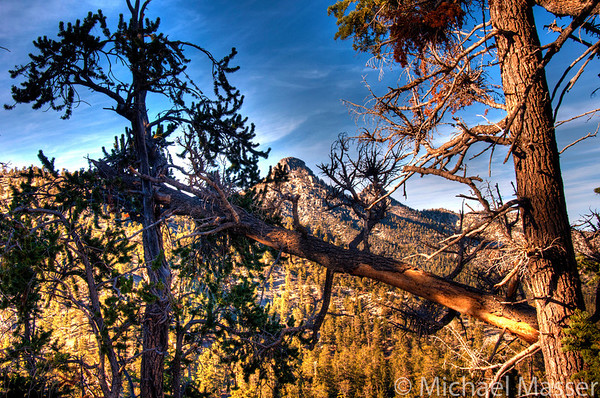 Mount-Charleston-Nevada-HDR-13