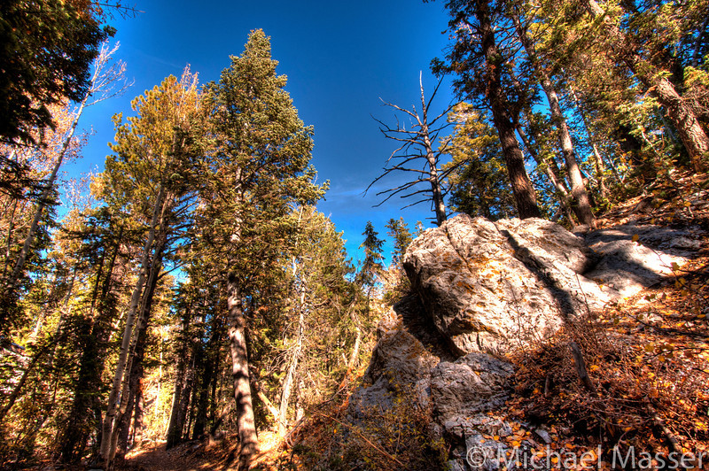 Mount-Charleston-Nevada-HDR-9