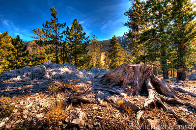 Mount-Charleston-Nevada-HDR-3