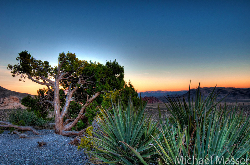 Red-Rock-Canyon-Nevada-at-Sunset-HDR-4