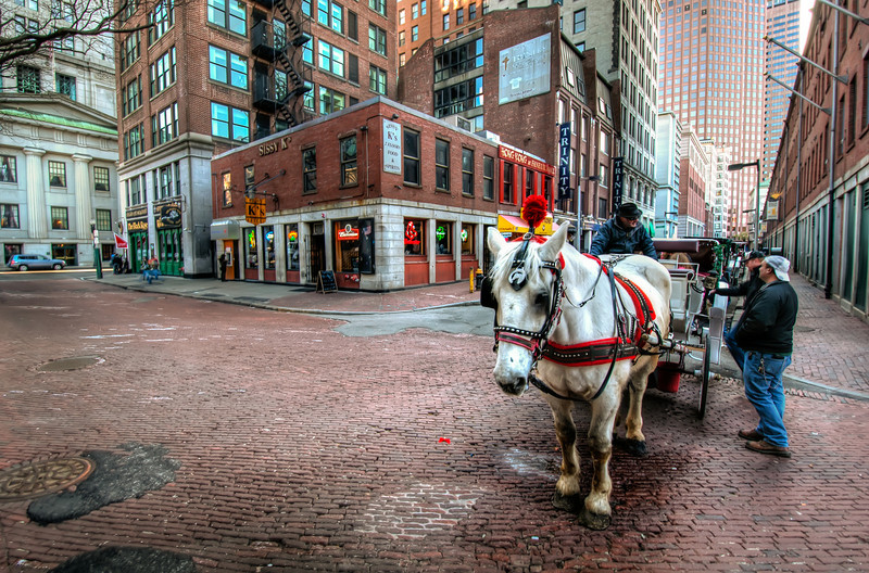 Sissy-Ks-Horse-and-Carriage-Boston-Massachusetts-HDR