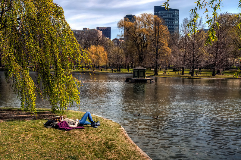 The-Public-Garden-Boston-Massachusetts-HDR-18