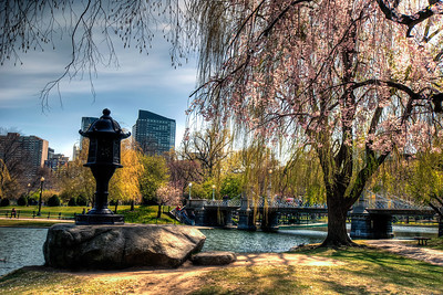 The-Public-Garden-Boston-Massachusetts-HDR-14