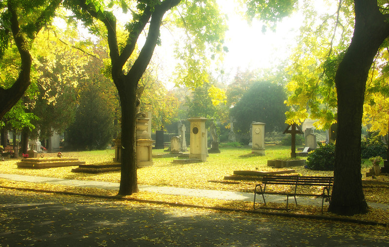 Magic at Kerepesi Cemetery