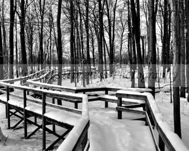 Stiglmeier Park - 8 x 10