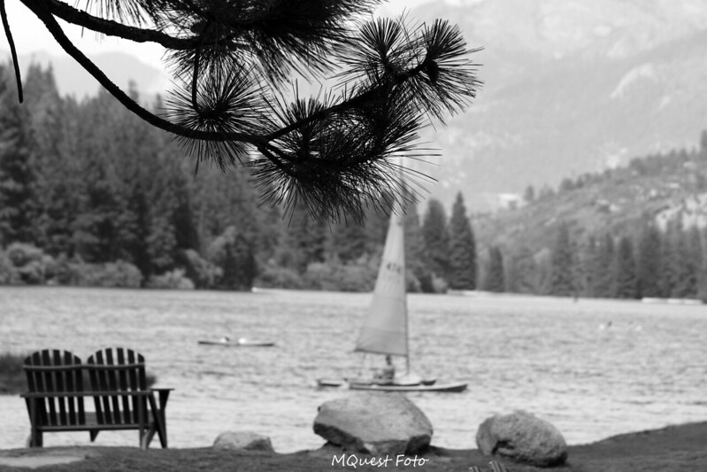 sailboat to a distant shore -  Thy mind drifts in cool waters  -  Muse & meditations   (Hume Lake Sequoia)