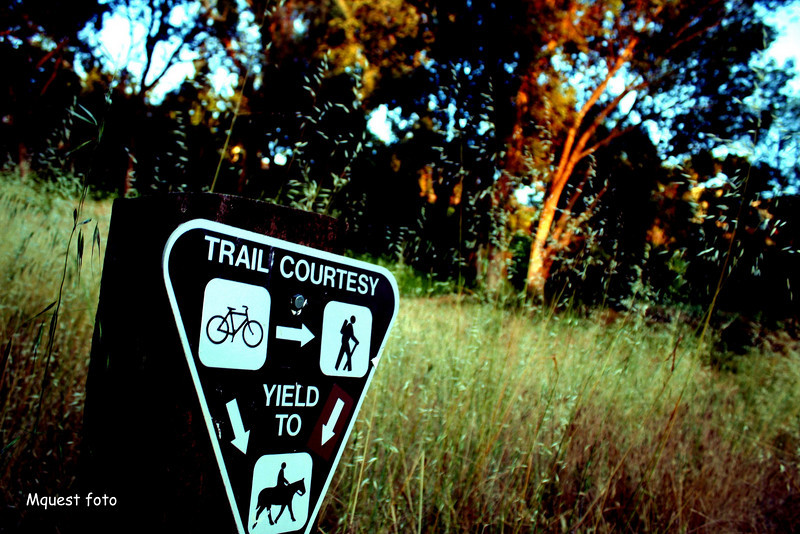 Fullerton Trails