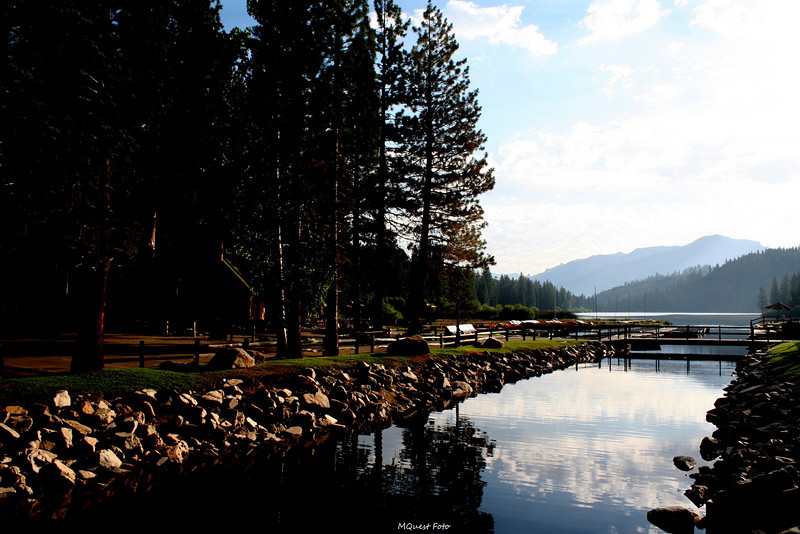 Hume Lake - Sequoia
