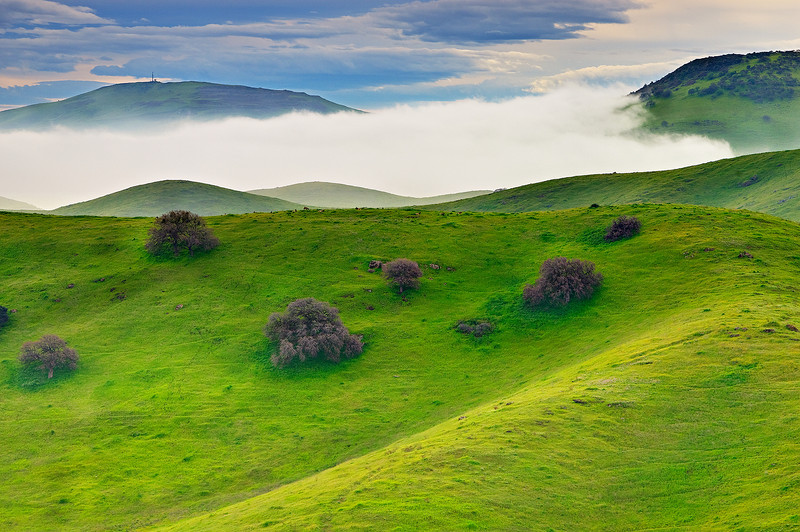 """""""Hills and Fog along Pacheco State Park""""  I captured this on the way to Yosemite in the Spring when the hills were lush and green.  The fog was swirling along the hills with the clouds up above.   Pacheco State Park is near Pacheco Pass along Highway 152 near Gilroy - one of the routes to Yosemite National Park from the South Bay area.  This is also near the San Luis Reservoir which probably helped with the fog."""