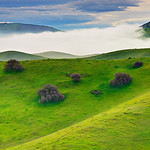 """Hills and Fog along Pacheco State Park""  I captured this on the way to Yosemite in the Spring when the hills were lush and green.  The fog was swirling along the hills with the clouds up above.   Pacheco State Park is near Pacheco Pass along Highway 152 near Gilroy - one of the routes to Yosemite National Park from the South Bay area.  This is also near the San Luis Reservoir which probably helped with the fog."
