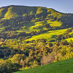 Sunset-East-Bay-Hills-Spring-Sunol-County-Park-Oak-Trees-Blue-Skies-rolling-hills-trees-grasses_D813941