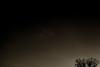 night-falling-on-tree-1311171