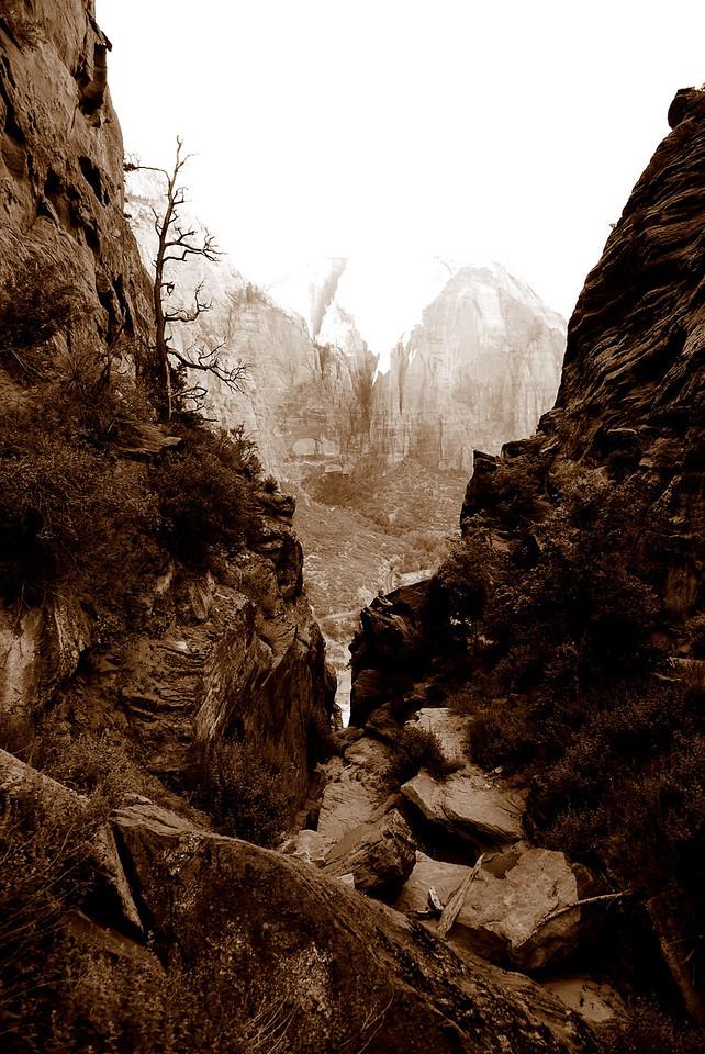 Zion National Park, Angels' Landing Trail