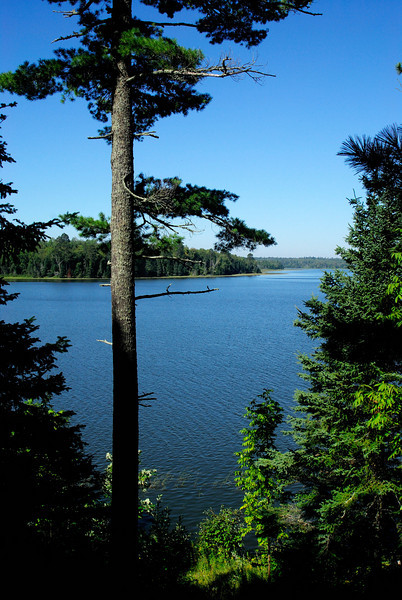 Looking out on Lake Itasca