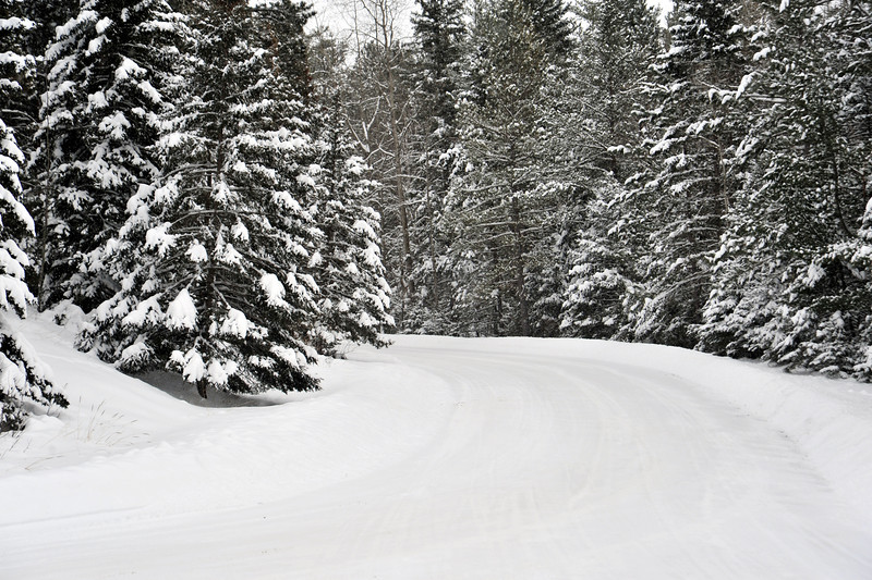 Winter road through Itasca State Park