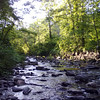 Treman Park, Ithaca, NY : Photos from the crappy cell phone camera long Gorge Trail, in Treman Park, Ithaca, NY