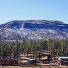 Hannagan Meadow, Apache-Sitgreaves National Forest-see the damage from the fire in summer of 2011