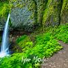 15  G Ponytail Falls