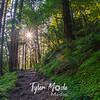 5  G Trail Sun