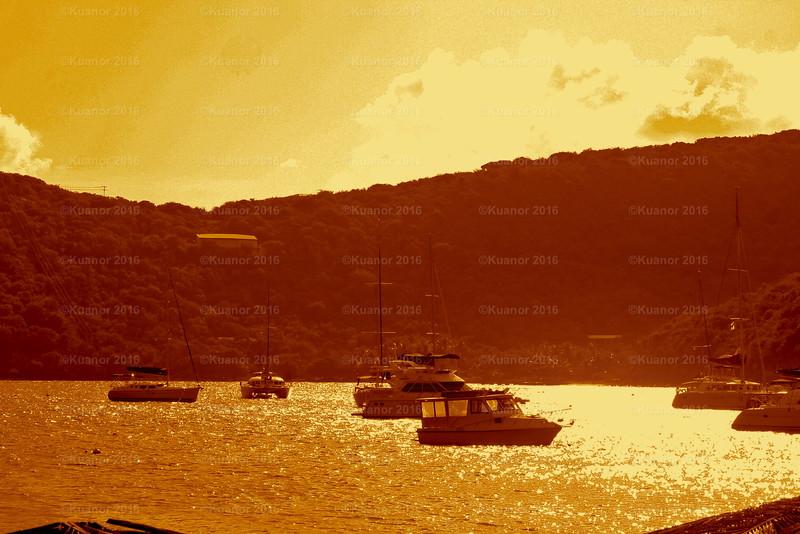 Marine Cay Gold