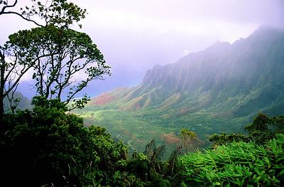 (D011) Kalalau Lookout - Kauai, Hawaii