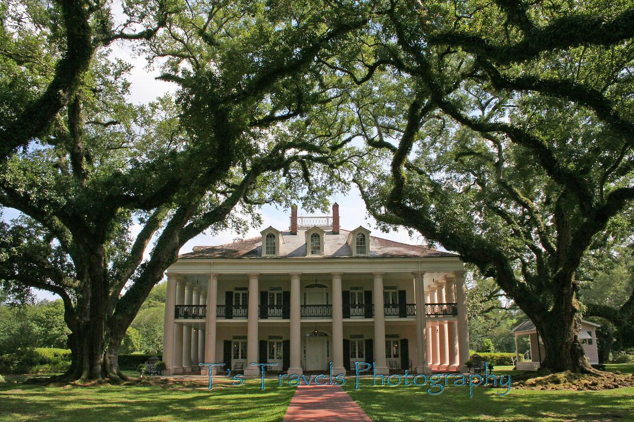 Oak Alley Plantation towards the main house, Vacherie, Louisiana