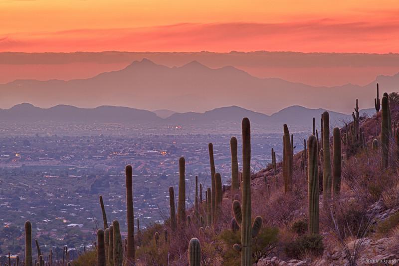 Tucson Sunset from Pima Canyon
