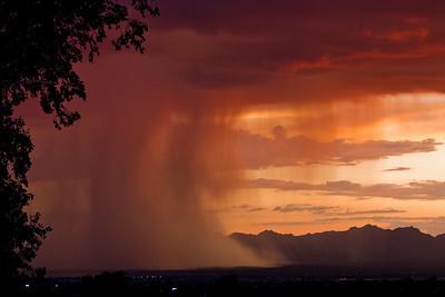 #3 Tucson Monsoon