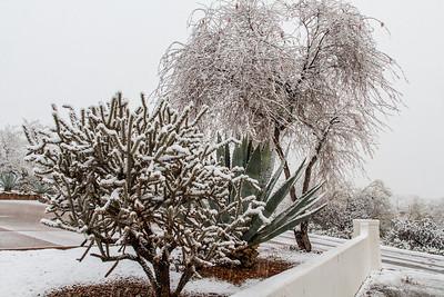 Tucson Snow 2013 -42
