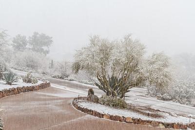 Tucson Snow 2013 -24