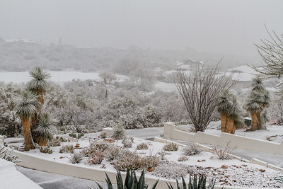 Tucson Snow 2013 -32