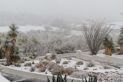 Tucson Snow 2013 -26