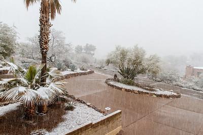 Tucson Snow 2013 -21