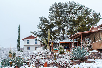 Tucson Snow 2013 -47
