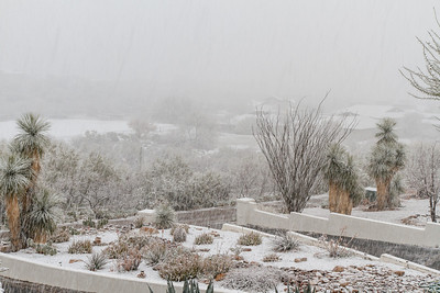 Tucson Snow 2013 -23