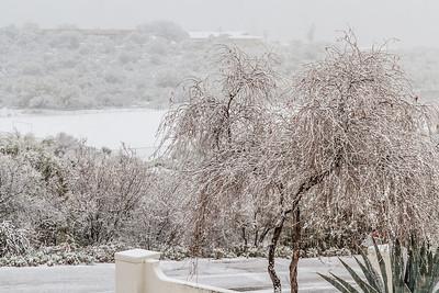 Tucson Snow 2013 -36