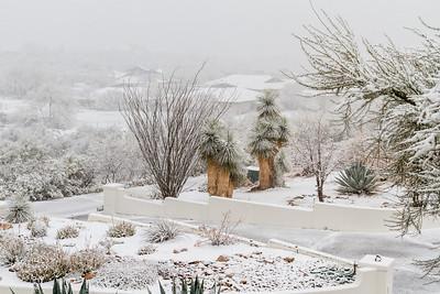 Tucson Snow 2013 -33