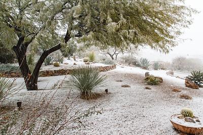 Tucson Snow 2013 -1